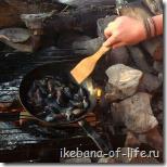 как приготовить мидий
