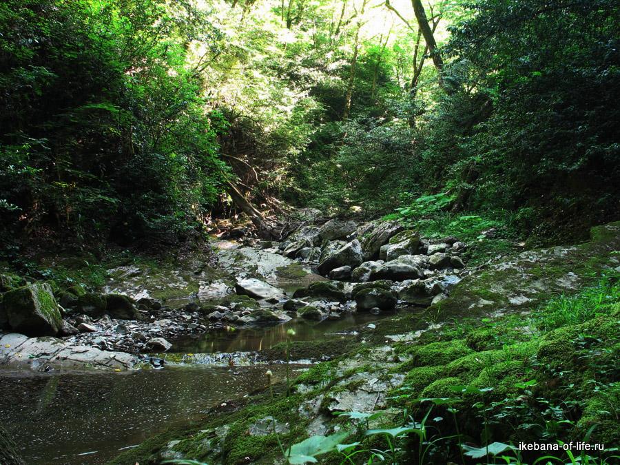 река Агура в Агурском ущелье