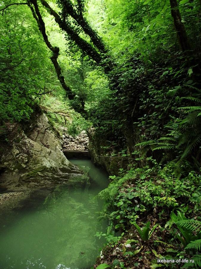 Разрушенная дамба реки Агуры